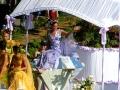 Fête des Mousselines 2005